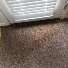 Carpet cleaning (1)