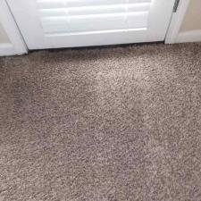 Carpet cleaning (10)