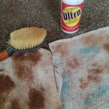 Carpet cleaning (3)