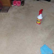 Carpet cleaning (7)